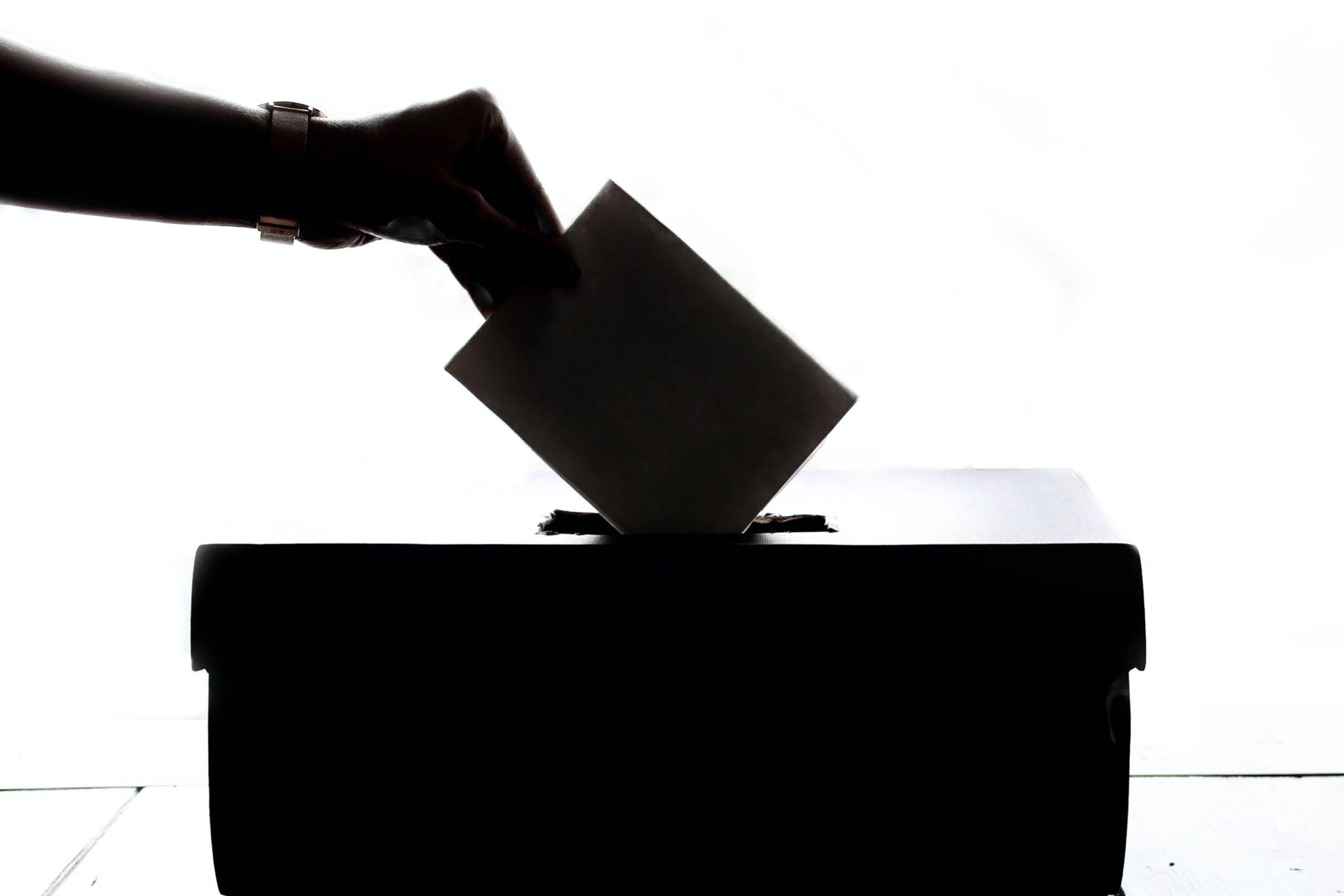 Zašto e-glasanje možda nije dobra ideja?